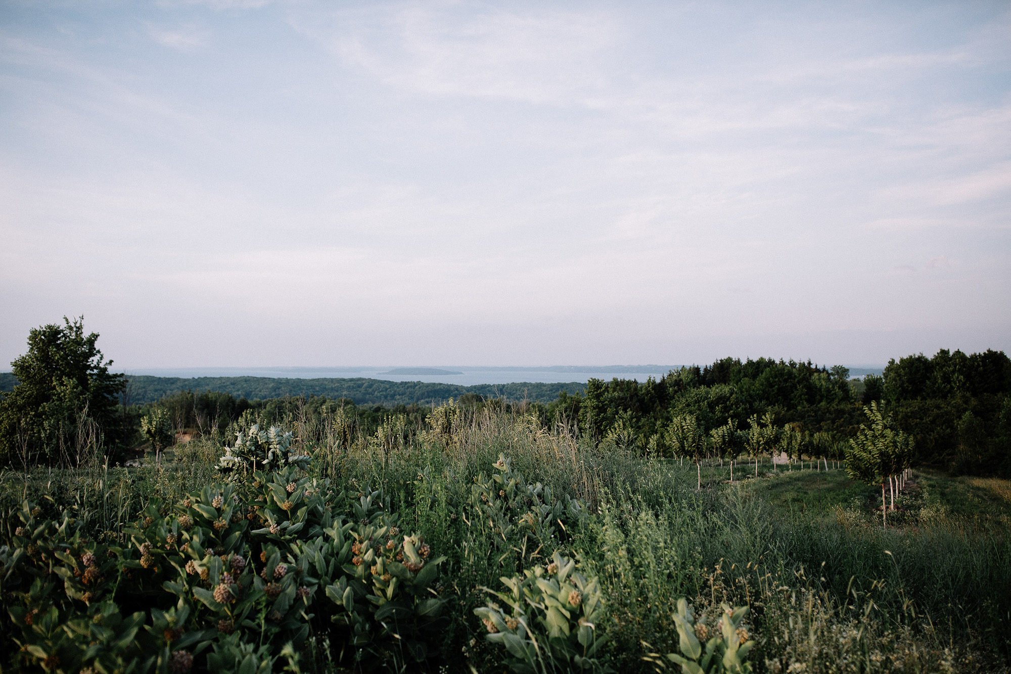 Bay View Weddings View of Grand Traverse Bay